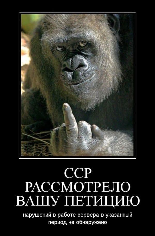 ССР рассмотрел вашу петицию
