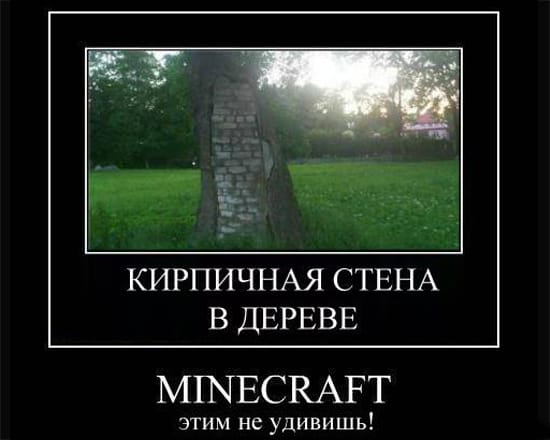 Кирпичная стена в дереве? Minecraft этим не удивить