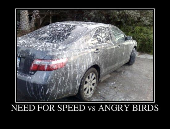 Need For Speed против Angry Birds