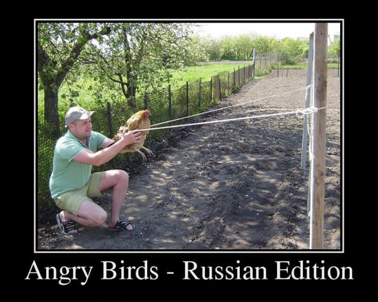 Angry Birds Russian Edition