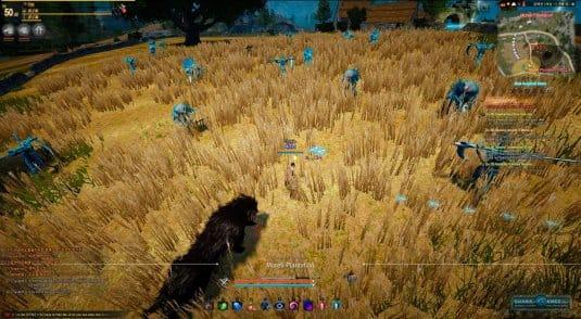 Фарм опыта на плантации Моретти