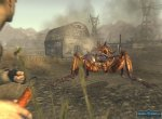 Скриншоты № 10. Гигантское насекомое Fallout: New Vegas