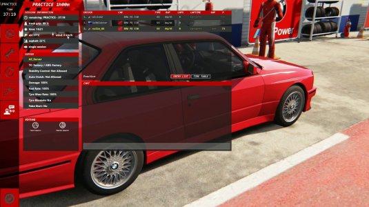 Настройки авто в Assetto Corsa