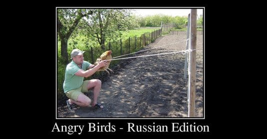 Демотиваторы Angry Birds