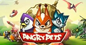 Angry pets