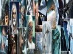 Персонажи и виды кораблей