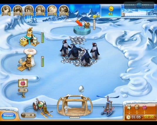 Подкормка пингвинов