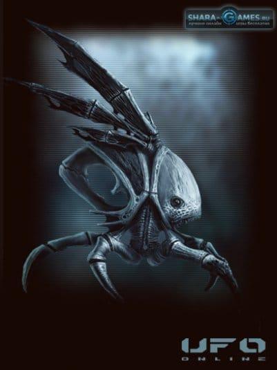 Даже мухи стали опасными