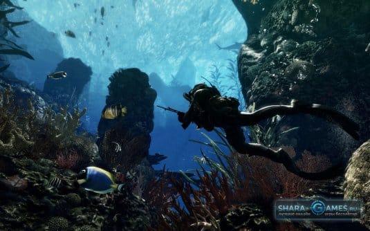 Задание для любителей подводной охоты