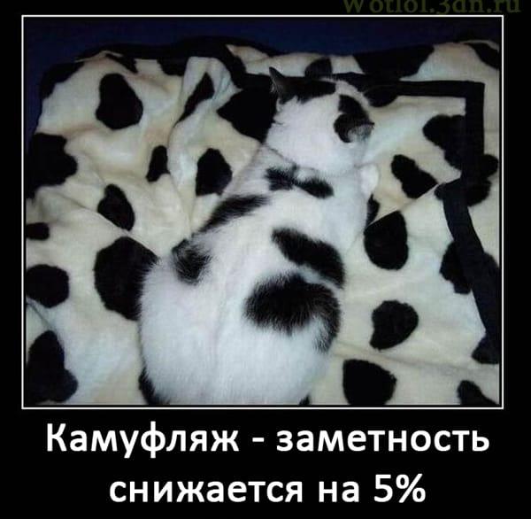 Камуфляж. Заметность снижается на 5%