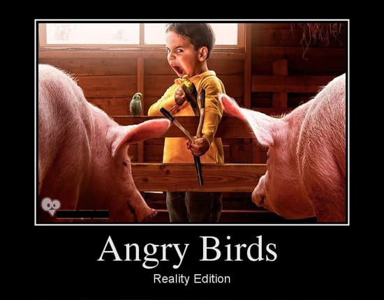 Angry Birds Reality Edition