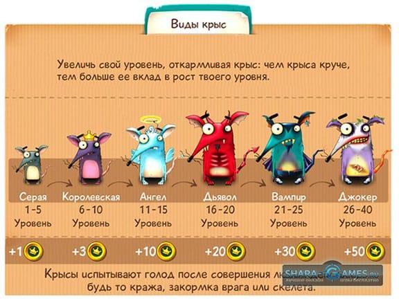 Увеличение уровня крыс