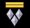 Старший уорент-офицер