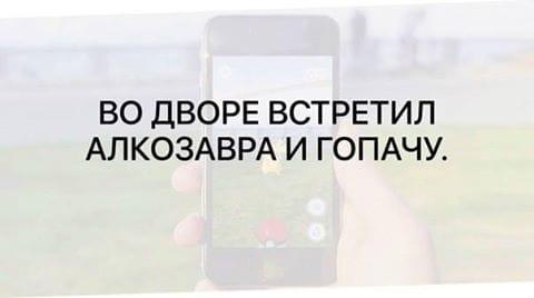 Мемы про покемонов и приколы из ВК #11