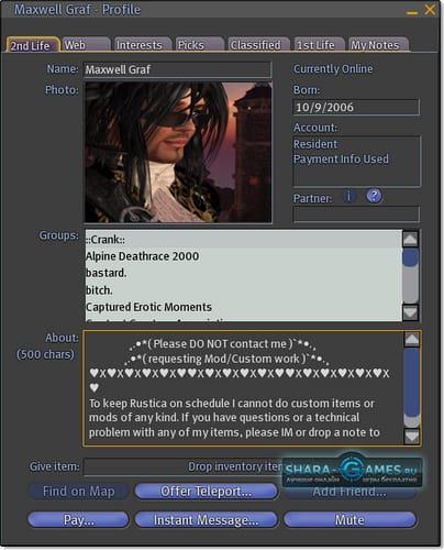 Профиль персонажа в игре