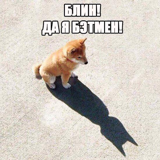 Каждый Бэтмен в душе