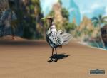 Птица в качестве маунта