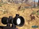Скриншот № 1 игры На охоту (Let's Hunt)